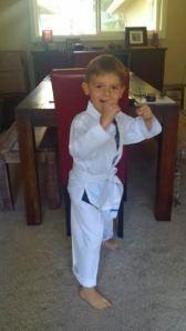 taekwondo max